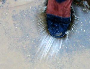 splashing-in-the-puddles
